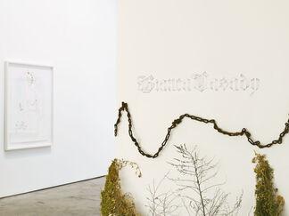 Daisy Chain, installation view