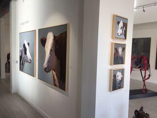 Charley Snow & Ben Steele, installation view
