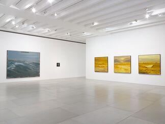 Enrique Martínez Celaya: The Mariner's Meadow, installation view