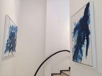 Conor Mccreedy   Mccreedyblue, installation view