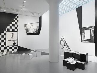 Karl Haendel: Organic Bedfellow, Feral Othello, installation view