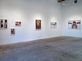 Luis De Jesus Los Angeles at Dallas Art Fair 2014, installation view