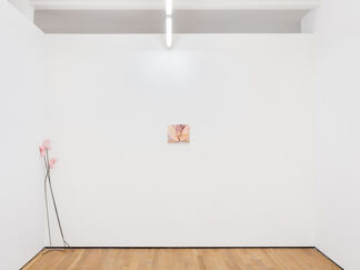 CONDO NEW YORK, installation view