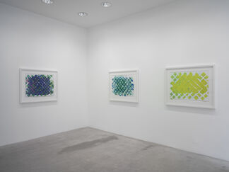 Terry Winters — Works On Paper, installation view