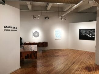Squeezed at Coldstream Fine Art, installation view
