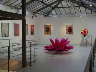 Plastic nature, group show. Curator Sang A Chun, installation view