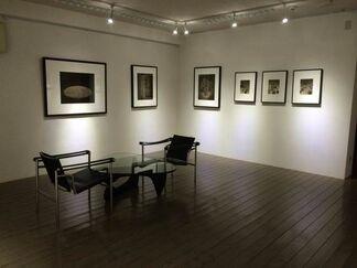 Ryuji TAIRA, Cadence, installation view