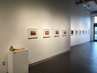 Reactive Matters, installation view