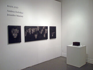 BADLAND: Jennifer Murray and Andrea DeFelice, installation view