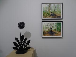 British Landscapes, installation view