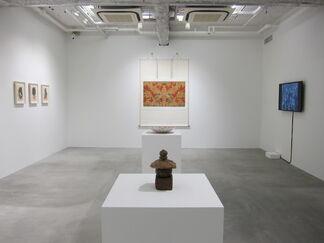 Walk in Asia, installation view