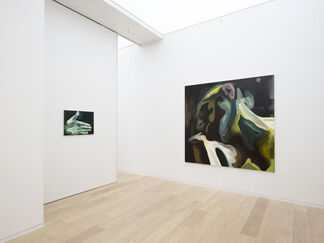 Clare Woods: Rehumanised, installation view