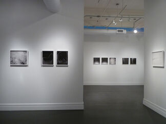 PAULA McCARTNEY: A Field Guide to Snow and Ice, installation view