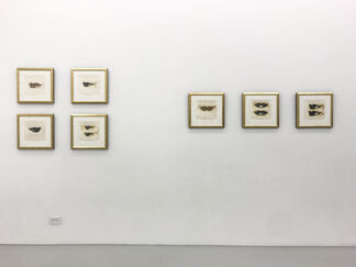 Andy Warhol, installation view