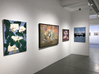 Spring Awakenings, installation view