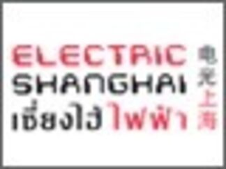 """Electric Shanghai"" (电力上海), installation view"