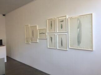 Christopher Wilmarth, installation view