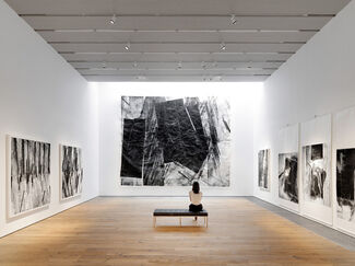 Zheng Chongbin—Impulse, Matter, Form, installation view