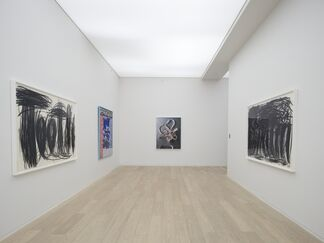 Trip of the Tongue, Curated by Piper Marshall, installation view