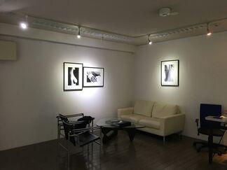 Ralph Gibson, installation view