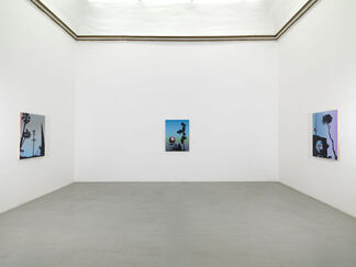 Glen Rubsamen - Gleaming and Inaccessible, installation view