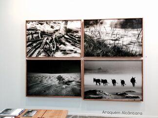 Galeria de Babel at SP-Arte 2015, installation view