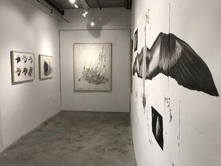 Thomas Broadbent: Phylum, installation view