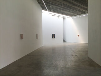 Fellaheen, installation view