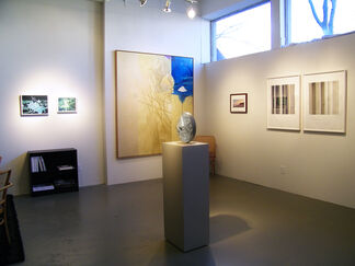 Wintry Mix, installation view
