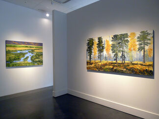 James Cook, installation view