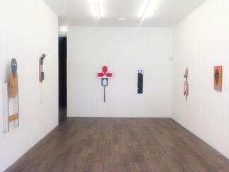 MICHAEL LAZARUS . no title, installation view