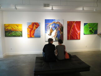 The Colors of Summer, installation view