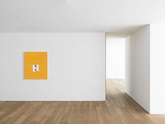 Matt Connors — stud/file, installation view