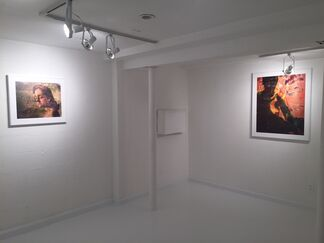 Melanie Willhide: The Disquieting Muses Again, installation view