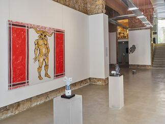 The Other, installation view
