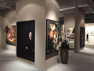 Werkhallen / Obermann / Burkhard GbR at Cologne Fine Art 2014, installation view