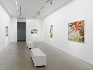 Aya Takano: To Lose Is To Gain, installation view