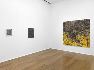 Guillermo Kuitca, installation view