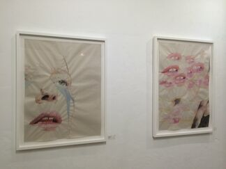 """""""ASSUMPTION"""" Solo Show by REBECCA DAYAN, installation view"""