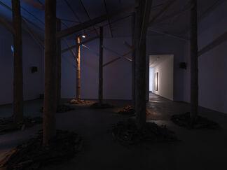 Andreas Greiner - Jungle Memory, installation view