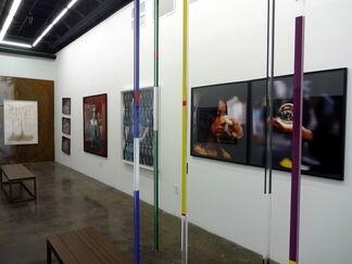 Divergent 2, installation view