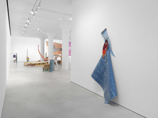 Jessica Stockholder: The Guests All Crowded Into the Dining Room, installation view