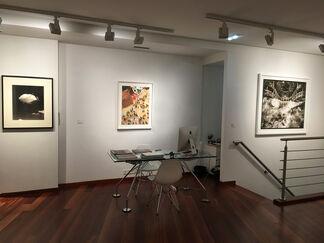30 +3  Anniversary exhibition, installation view