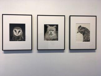 Walter Schels, Tiere / Animals, installation view