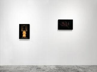 Shen Wei | Self, installation view