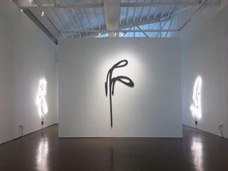 HANS SCHMITT-MATZEN   the leviathan, installation view