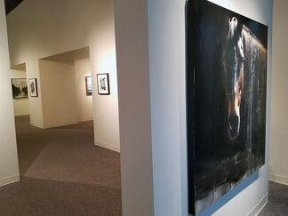 Illuminate, installation view