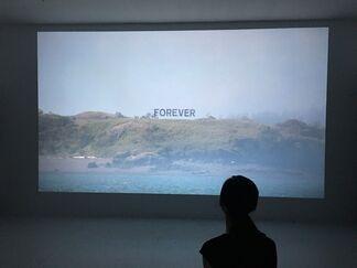Alicia Eggert  Partial Visibility, installation view