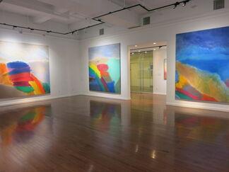 Ronnie Landfield, Five Decades, installation view