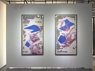 Lost Opportunities? 机不可失?, installation view
